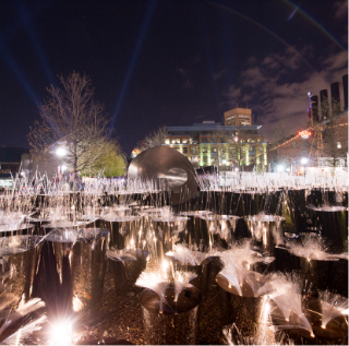 LightCity_FirefliesbyCai Guo-Qiang StudioandFung Collaboratives_ John R Talley Photography3
