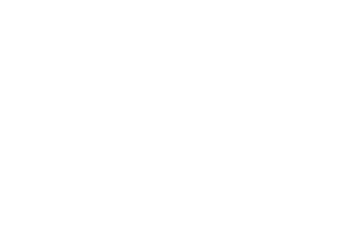 MD STATE ARTS COUNCIL